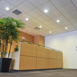 副業や兼業をする人の労災保険や雇用保険について